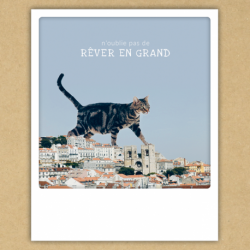 Carte Animaux Rêver en grand - Pickmotion